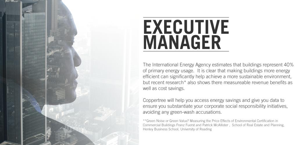 executive (1)